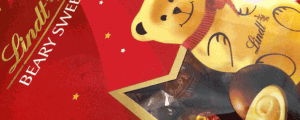 Limited Edition Lindt Beary Sweet Truffles