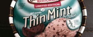 Edy's Limited Edition Slow Churned Rich and Creamy Girl Scout Thin Mint Cookie Ice Cream