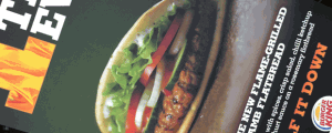 My Big Fat Irish Regret: The Burger King Flame Grilled Lamb Flatbread