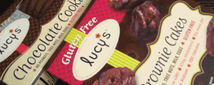 Dr. Lucy's Gluten Free Chocolate Cookies & Brownie Cakes and Video Game High School