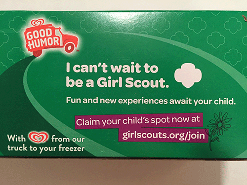 Good Humor Girl Scout Thin Mint Frozen Dessert Bars